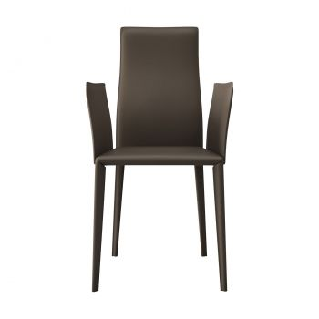 Lucca Dining Armchair - Reclaimed Dove Gray Leather