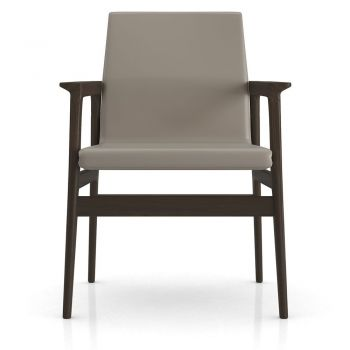 Stanton Dining Armchair - Castle Gray Eco Leather, Frame in Seared Ash Wood